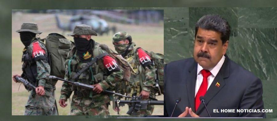 Consejero de la Presidencia asegura que el Eln apoya la dictadura de Nicolás Maduro en Venezuela.