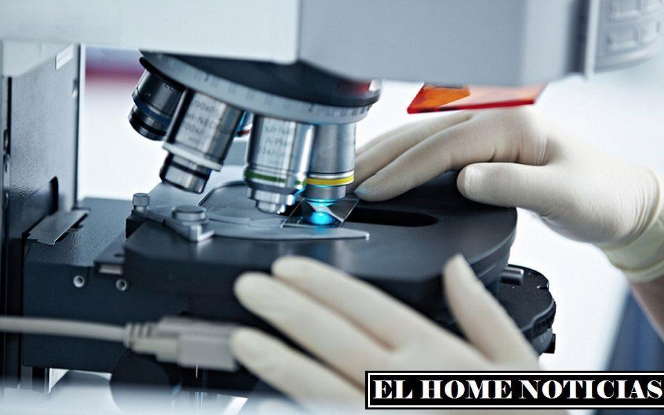 La penetración del coronavirus en las células humanas casi no tiene ningún efecto sobre los tipos de microARN que producen.