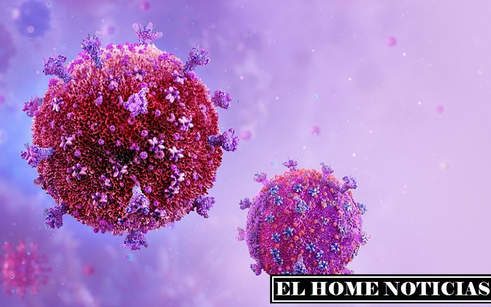 Durante la infección, el VIH está incrustado en el ADN de las células, hasta ahora no se han inventado formas efectivas de deshacerse de él.